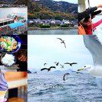 【日本鳥取景點】浦富海岸Tottori ocean,萍子推薦山陰海岸松島遊覽,日本百景之一,鳥取海鷗,鳥取體驗餵海鷗,搭遊覽船體驗餵食海鷗,午餐吃海鮮会席料理生魚片定食 @upssmile 向上的微笑 萍子 旅食設影