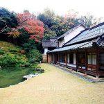 日本鳥取 觀音院Kannon-in佛教天臺宗寺院Tottori,日本傳統庭園神社品著日式抹茶香氣,非常有禪意的鳥取輕旅行,鳥取寺廟,鳥取神社,鳥取觀音院 @upssmile向上的微笑萍子 旅食設影