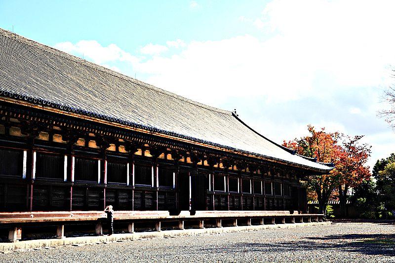 三十三間堂,京都一千零一座千手觀音蓮華王院,33間堂禁止攝影,京都必訪景點,三十三間堂交通