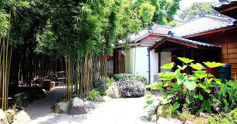 【陽明山景點】CAMA COFFEE ROASTERS 豆留森林,亞洲最美咖啡秘境,宛如京都嵐山竹林秘境,IG網美打卡台北景點,外國觀光客必去 @upssmile向上的微笑萍子 旅食設影