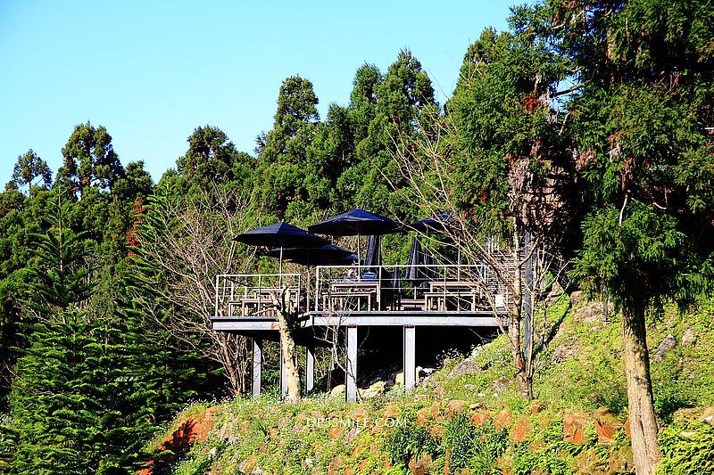 新北三峽景點 熊空茶園,台灣農林三峽百年茶園,海拔700公尺森林玻璃屋咖啡館,三峽秘境,新北世外桃源 @upssmile向上的微笑萍子 旅食設影